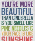 You're More Beautiful Than Cinderella & You Smell Like Pine Needles & Your Face Is Like Sunshine