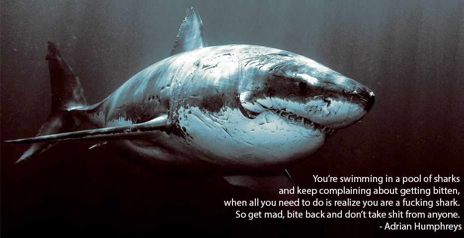 You're Swimming In A Pool Of Sharks And Keep Complaining About Getting Bitten… - Adrian Humphreys