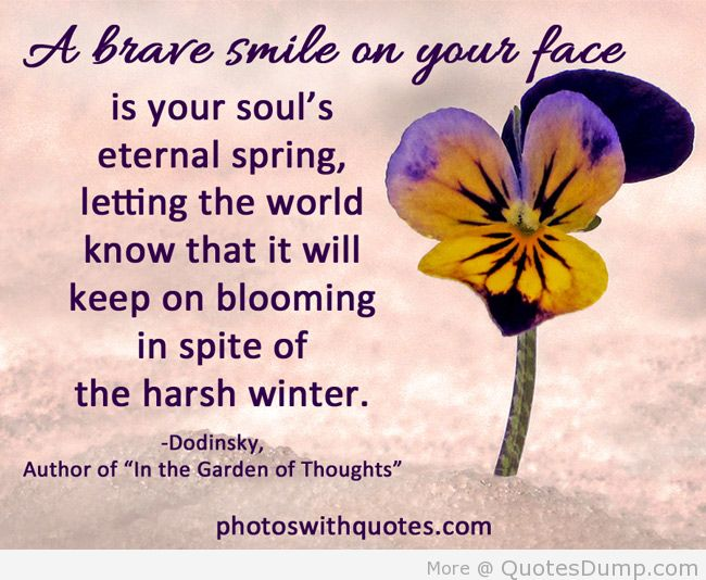 A Brave Smile On Your Face Is Your Soul's Eternal Spring, Letting The World Know That It Will Keep On Blooming In Spite Of The Harsh Winter.