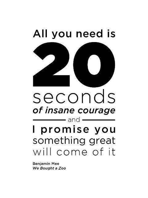 All You Need Is 20 Seconds Of Insane Courage And I Promise You Something Great Will Come Of It
