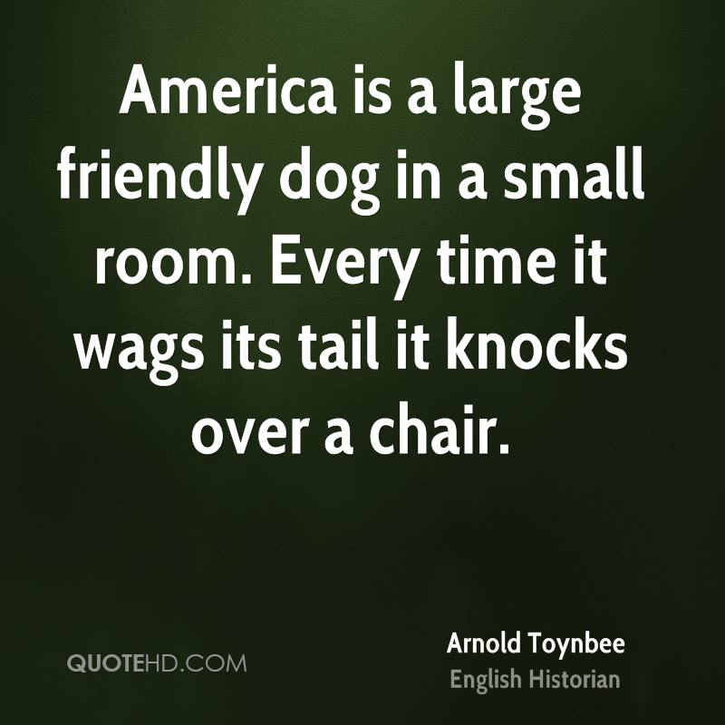 America is a large friendly dog in a small room every for Small room quotes