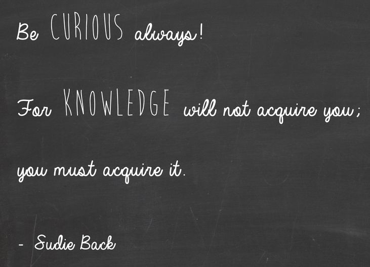 Be Curious Always For Knowledge Will Not Acquire You You