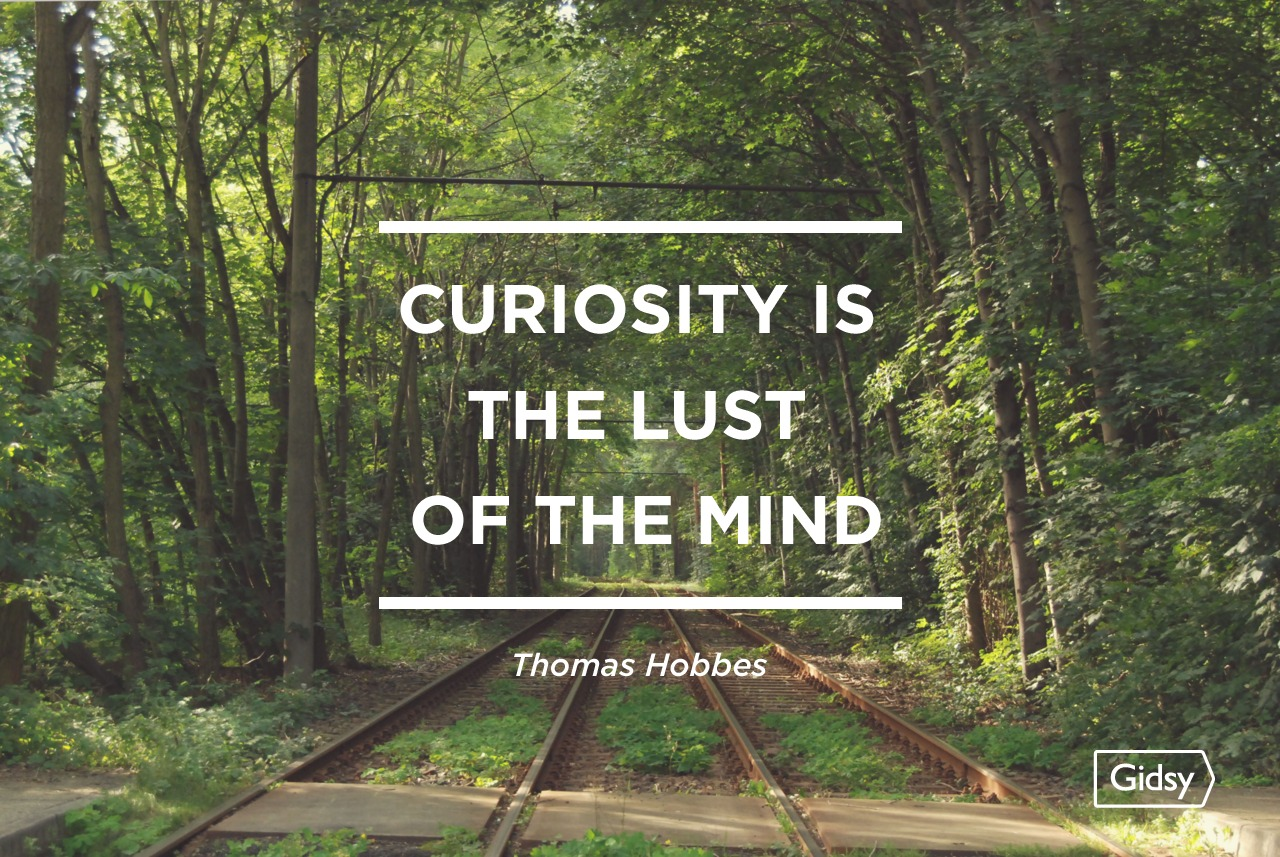 Curiosity Is The Lust Of The Mind    Curiosity Quotes
