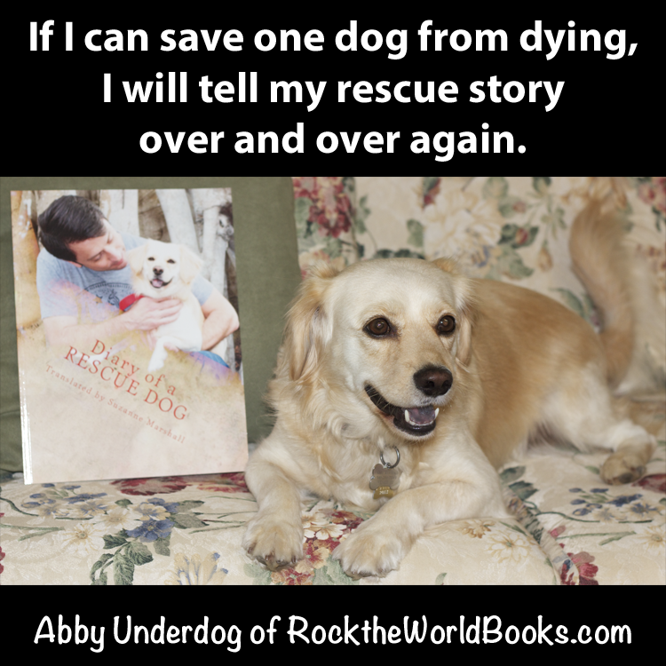 quotes about pets dying quotesgram