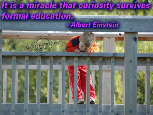 it is a miracle that curiosity survives formal education essay