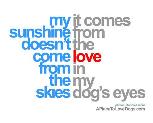 dog quotes images 1583 quotes page 3