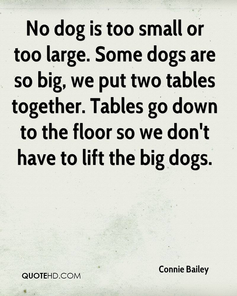 The Little Dogs Are Allowed On The Big Dog Side But The Big Dogs