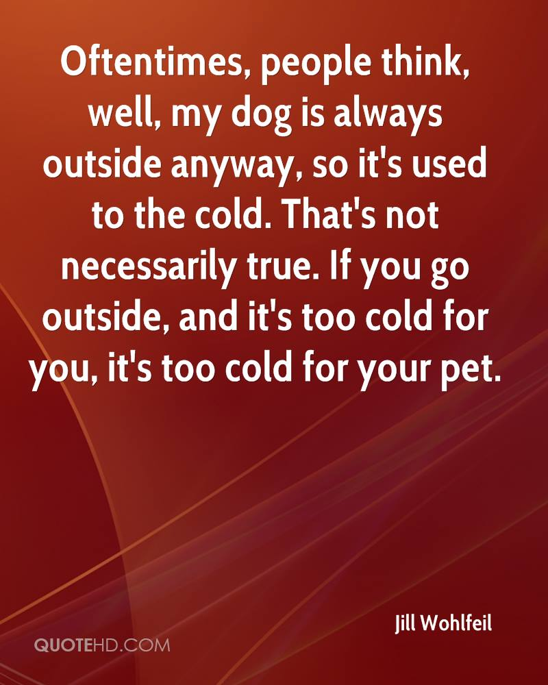 Its So Cold Outside Quotes. QuotesGram