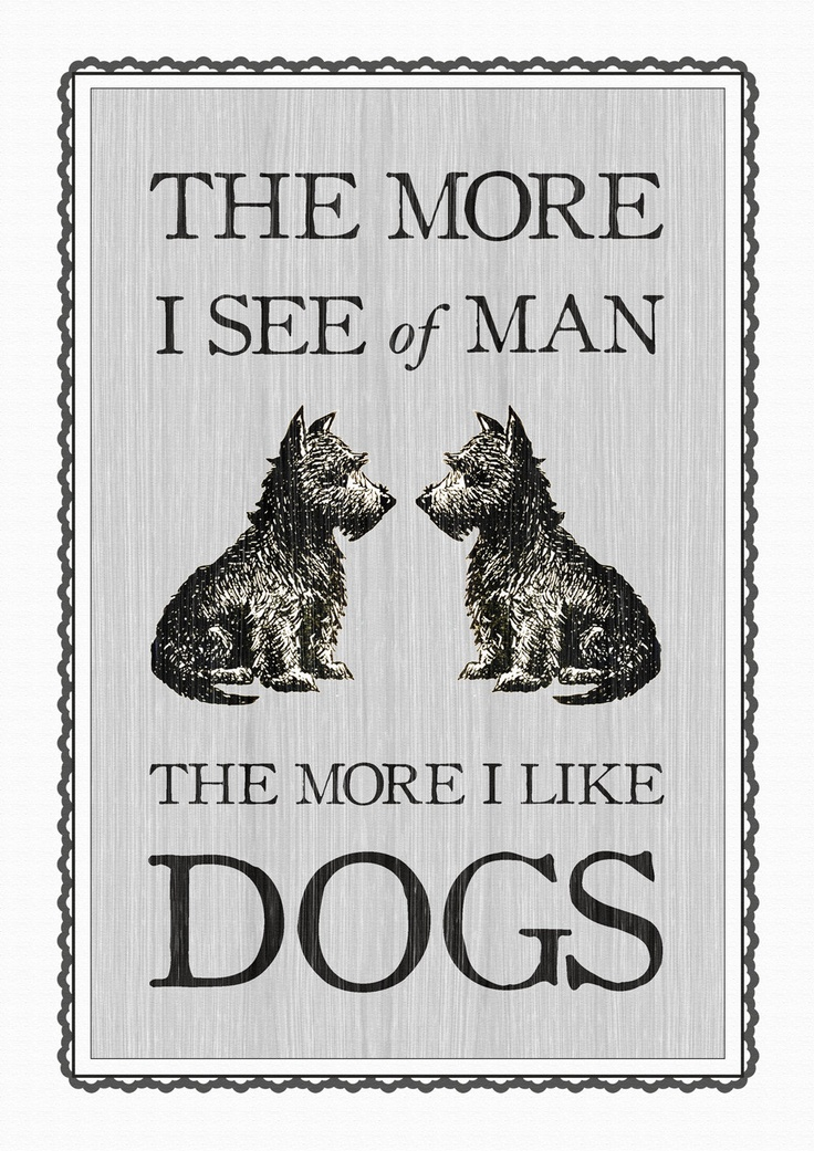 Check Out The More Like This: Dog Quotes Pictures And Dog Quotes Images With Message