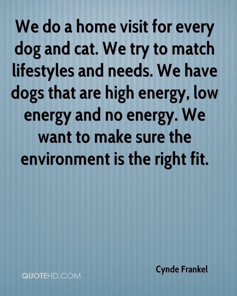 We Do A Home Visit For Every Dog And Cat. We Try To Match Lifestyles And Needs. We Have Dogs That Are High Energy.