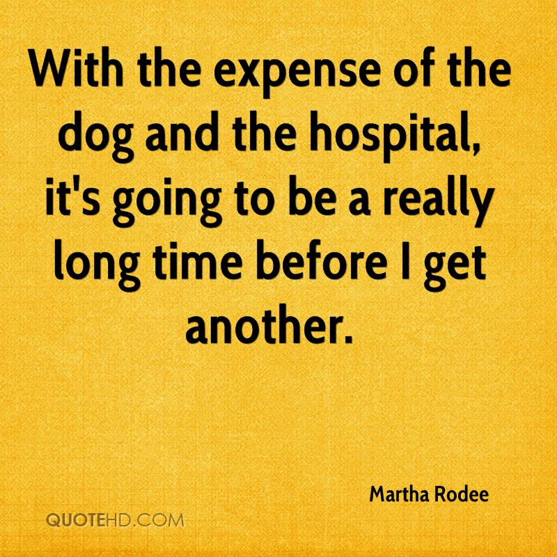 Gym Quote I Will Always Rise Back Up And I Ll Be: With The Expense Of The Dog And The Hospital, It's Going