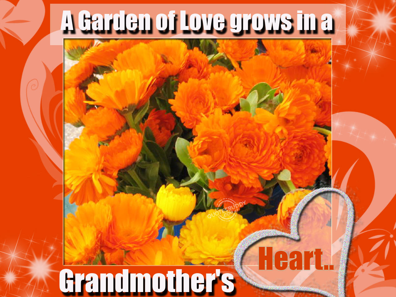 A Garden Of Love Grows In A Grandmother's Heart.