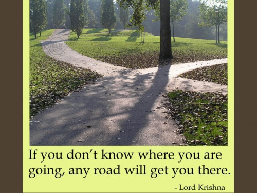 if you don t know where you are going any road will get