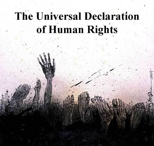 Human Rights Quotes Pictures And Human Rights Quotes