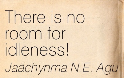There Is No Room For Idleness. - Jaachynma N.E. Agu