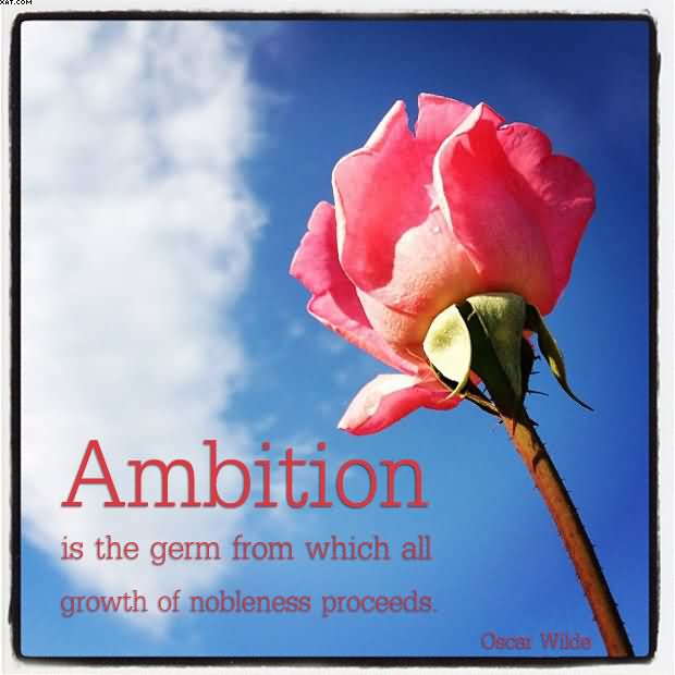 ambition is the last refuge of failure essay