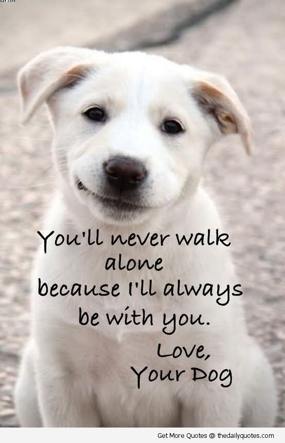 You'll Never Walk Alone Because I'll Always Be With You. Love, Your Dog.