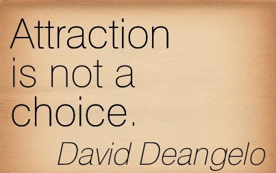 Attraction Is Not A Choice. - David Deangelo