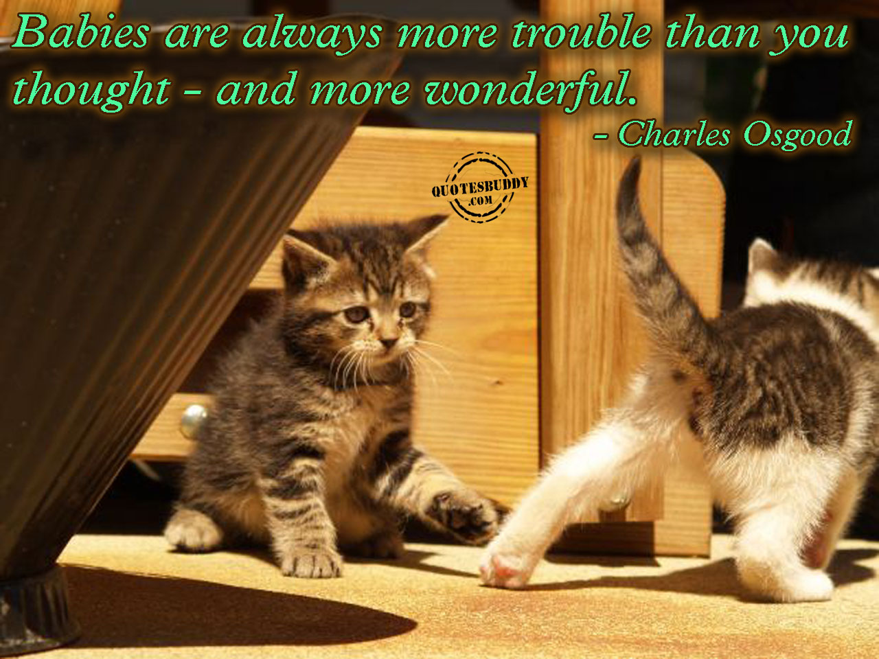 Babies Are Always More Trouble Than You Thought- And More Wonderful. - Charles Osgood