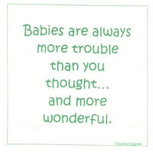 Babies Are Always More Trouble Than You Thought And More Wonderful.