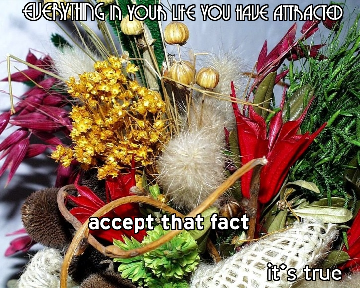 Everything In Your Life You Have Attracted Accept The Fact It's True.