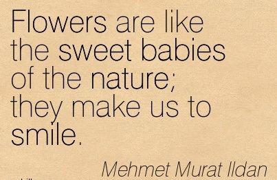Flowers Are Like The Sweet Babies Of The Nature, They Make Us To Smile. - Mehmet Murat Ildan