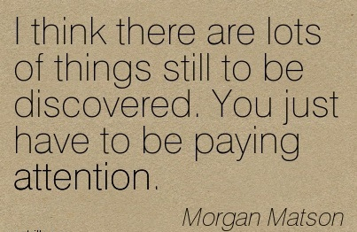 I Think There Are Lots Of Things Still To Be Discovered. You Just Have To Be Paying Attention. - Morgan Matson