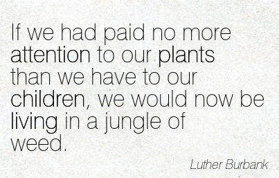 If We Had Paid No More Attention To Our Plants Than We Have To Our Children, We Would Now Be Living In A Jungle Of Weed. - Luther Burbank
