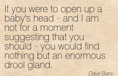 If You Were To Open Up A Baby's Head - And I Am Not For A Moment Suggesting That You Should - You Would Find Nothing But An Enormous Drool Gland. - Dave Barry