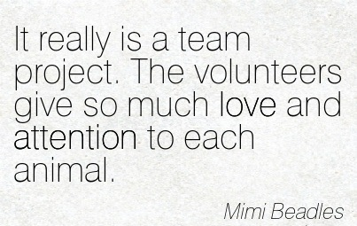 It Really Is A Team Project. The Volunteers Give So Much Love And Attention To Each Animal. - Mimi Beadles