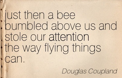 Just Then A Bee Bumbled Above Us And Stole Our Attention The Way Flying Things Can. - Douglas Coupland