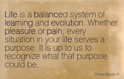 Life Is A Balanced System Of Learning And Evolution… - Steve Maraboli