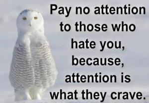 Pay No Attention To Those Who Hate You, Because, Attention Is What They Crave.