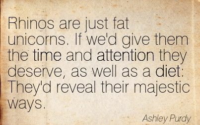Rhinos Are Just Fat Unicorns. If We'd Give Them The Time And Attention They Deserve, As Well As A Diet  They'd Reveal Their Majestic Ways. - Ashley Purdy