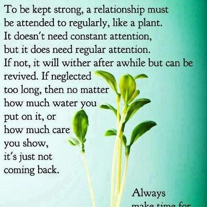 To Be Kept Strong, A Relationship Must Be Attended To Regularly, Like A Plant. It Doesn't Need Constant Attention..