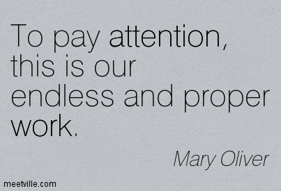 To Pay Attention, This Is Our Endless And Proper Work. - Mary Oliver