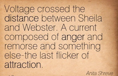 Voltage Crossed The Distance Between Sheila And Webster. A Current Composed Of Anger And Remorse And Something Else-The Last Flicker Of Attraction. - Anita Shreve