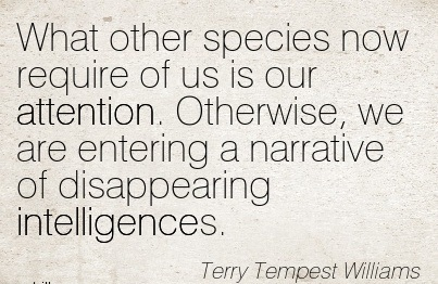 What Other Species Now Require Of Us Is Our Attention. Otherwise, We Are Entering A Narrative Of Disappearing Intelligences. - Terry Tempest Williams