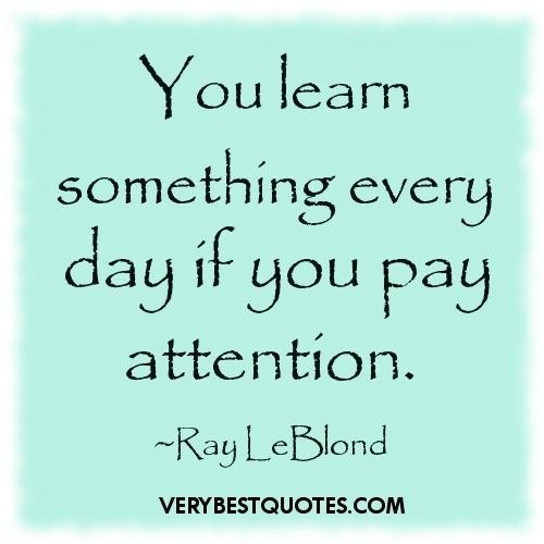 You Learn Something Every Day If You Pay Attention. - Ray LeBlond (3)