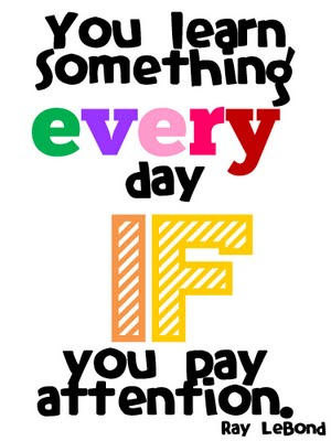 You Learn Something Every Day If You Pay Attention. - Ray LeBond