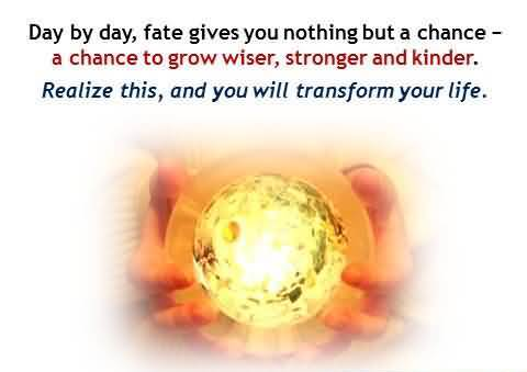 Day By Day, Fate Gives You Nothing But A Chance A Chance To Grow Wiser…