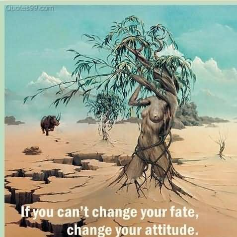 Delightful If You Canu0027t Change Your Fate, Change Your Attitude. ~ Fate Quotes