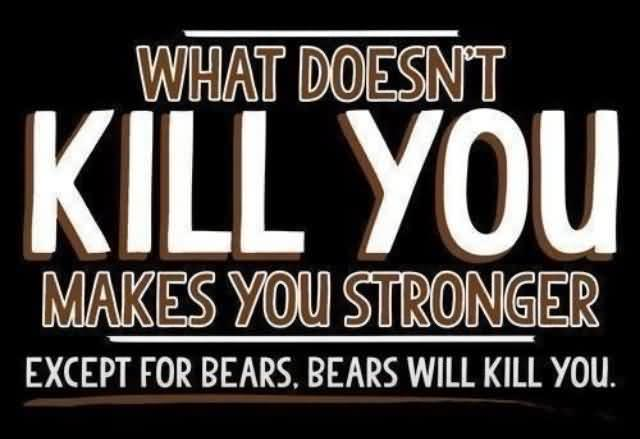 What Doesn't Kill You Makes You Stronger Except For Bears. Bears Will Kill You.