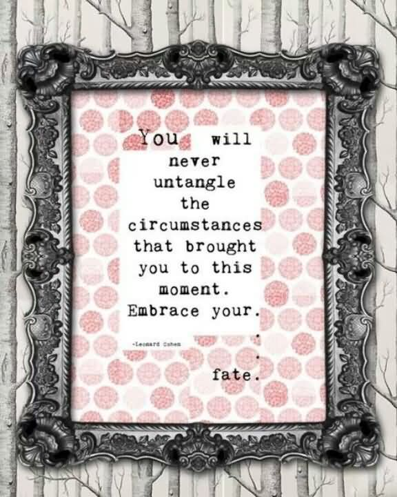 You Will Never Untangle The Circumstances That Brought You To This Moment. Embrace Your Fate.