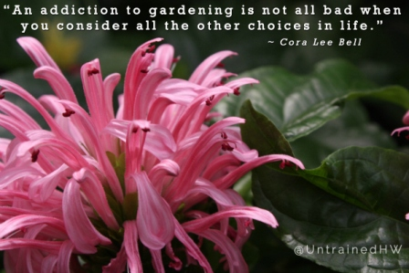 """"""" An Addiction To Gardening Is Not All Bad When  You Consider All The Other Choices In Life. """" - Cora Lee Bell"""