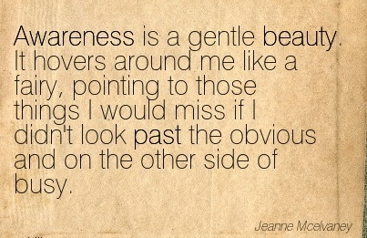Awareness Is A Gentle Beauty. It Hovers Around Me Like A Fairy, Pointing To Those Things I Would Miss If I Didn't Look past The Obvious And On The Other Side Of Busy. - Jeame MCe