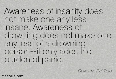 Awareness Of Insanity Does Not Make One Any Less Insane. Awareness Of Drowning Does Not Make One Any Less Of A Drowning Person–It Only Adds The Burden Of Panic. - Guillermo Del