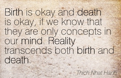Birth Is Okay And Death Is Okay, if We Know that they are only concepts in our mind. Reality Transcends Both Birth And Death. - Thich Nhat Hanh