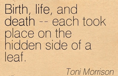 Birth, Life, And Death — Each Took Place On The Hidden Side Of A Leaf. - Toni Morrison