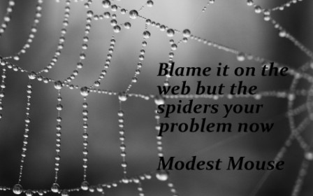 Blame It On The Web But The Spiders Your Problem Now. - Modest Mouse